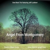 Angel From Montgomery by Dow Brain Trio