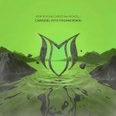 Carousel (Vito Fognini Remix) van Adip Kiyoi