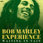 Waiting in Vain de Bob Marley Experience