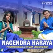 Nagendra Haraya by P Unni Krishnan