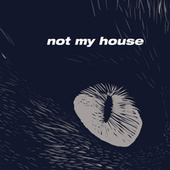 Not My House by LV