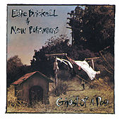 Ghost Of A Dog by Edie Brickell & New Bohemians