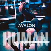Human de Avalon