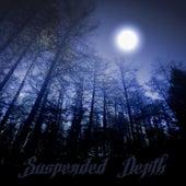 Suspended Depth by Fog