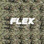 Flex by Dan