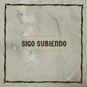 Sigo Subiendo by La maravilla arca