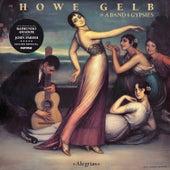 Alegrías (10th Anniversary Edition) by Howe Gelb