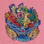 A volar (feat. Lido Pimienta) by Muerdo