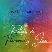 Retales de Flamenco y Jazz by José Luis Santacruz