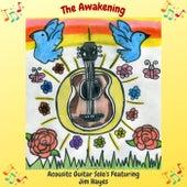 The Awakening by Jim Hayes