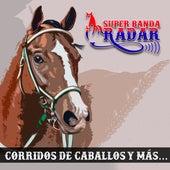 Corridos de Caballos y Más de Super Banda Radar