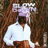 Slow Down by Gibin Cruz