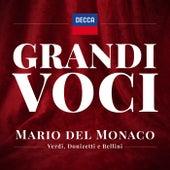 Grandi Voci – Mario del Monaco canta Verdi, Donizetti e Bellini- Una collana con registrazioni originali Decca e Deutsche Grammophon rimasterizzate con le tecniche più moderne che ne garantiscono eccellenza tecnica e artistica. de Giuseppe Verdi