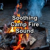 Soothing Camp Fire Sound by S.P.A