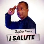 I Salute by Olayinka James