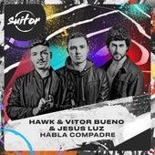 Vitor Bueno Hawk: