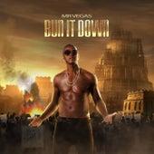 Bun It Down by Mr. Vegas
