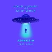 Amnesia by Loud Luxury