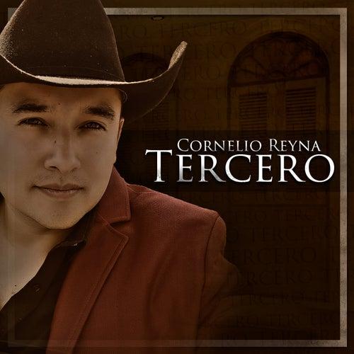 No Llega el Olvido (Versión Extendida) de Cornelio Reyna Tercero