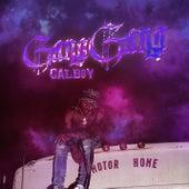 Gang Gang von Calboy