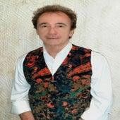 Partes Iguais de Gilberto Gouveia