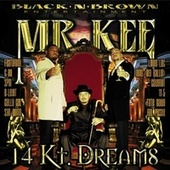 14 Kt . Dreams by Mr. Kee