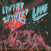 Southern By The Grace Of God di Lynyrd Skynyrd
