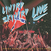 Southern By The Grace (Linked) de Lynyrd Skynyrd