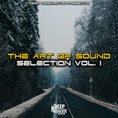 The Art Of Sounds, Vol. 1 by Various Artists