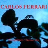 Escapismos / Capítulo Dos de Carlos Ferrari