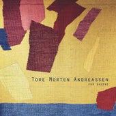 For dagene von Tore Morten Andreassen