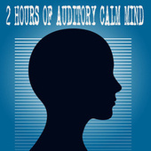 2 Hours Of Auditory Calm Mind by Color Noise Therapy