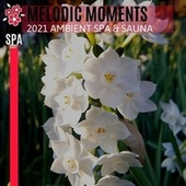 Melodic Moments - 2021 Ambient Spa & Sauna von Various Artists