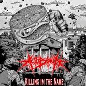 Killing in the Name de AcidBrain