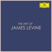 The Art of James Levine de James Levine