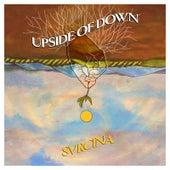Upside of Down di Svrcina
