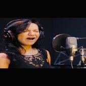 I Cant Make You Love Me (Cover) by Pri Vianna