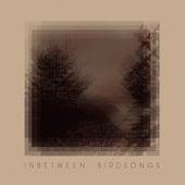 Inbetween Birdsongs by Matthias Gusset