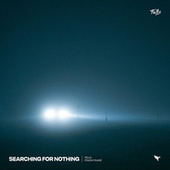 Searching for Nothing by The Fells