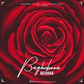 Bagheboon by Mehrab