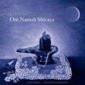 Om Namah Shivaya by Music For Meditation