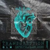 Transgression by Glm