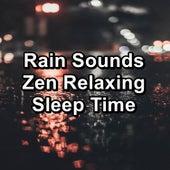 Rain Sounds Zen Relaxing Sleep Time by White Noise Baby Sleep (1)