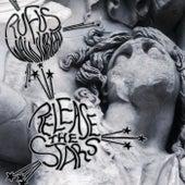 Release The Stars de Rufus Wainwright
