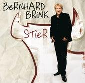 Stier von Bernhard Brink