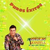 Puros Éxitos by Nelson Kanzela