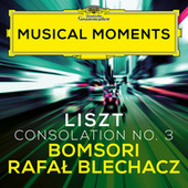 Liszt: Consolations, S. 172: No. 3 Lento placido in D Flat Major (Transcr. Milstein for Violin and Piano) (Musical Moments) von Bomsori