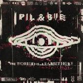 The World is a Rabbit Hole de Pil & Bue