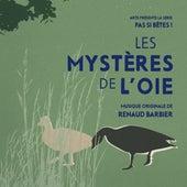 Pas si bêtes ! - Les mystères de l'oie (Bande originale de la série télévisée) by Renaud Barbier