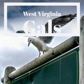 West Virginia Gals by Various Artists
